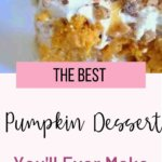 This easy pumpkin dessert is absolute fall HEAVEN! Not too sweet, and not too spicy, this simple dessert is super kid friendly....and FALL friendly! This desert uses a cake mix to make it super quick and simple! This is a perfect Thanksgiving dessert or just to have around the holidays! #pumpkinrecipes #falldessert #easyrecipes #familyfriendlydessert
