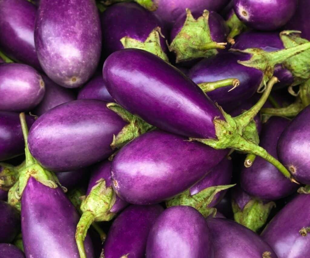 A bunch of purple eggplant.